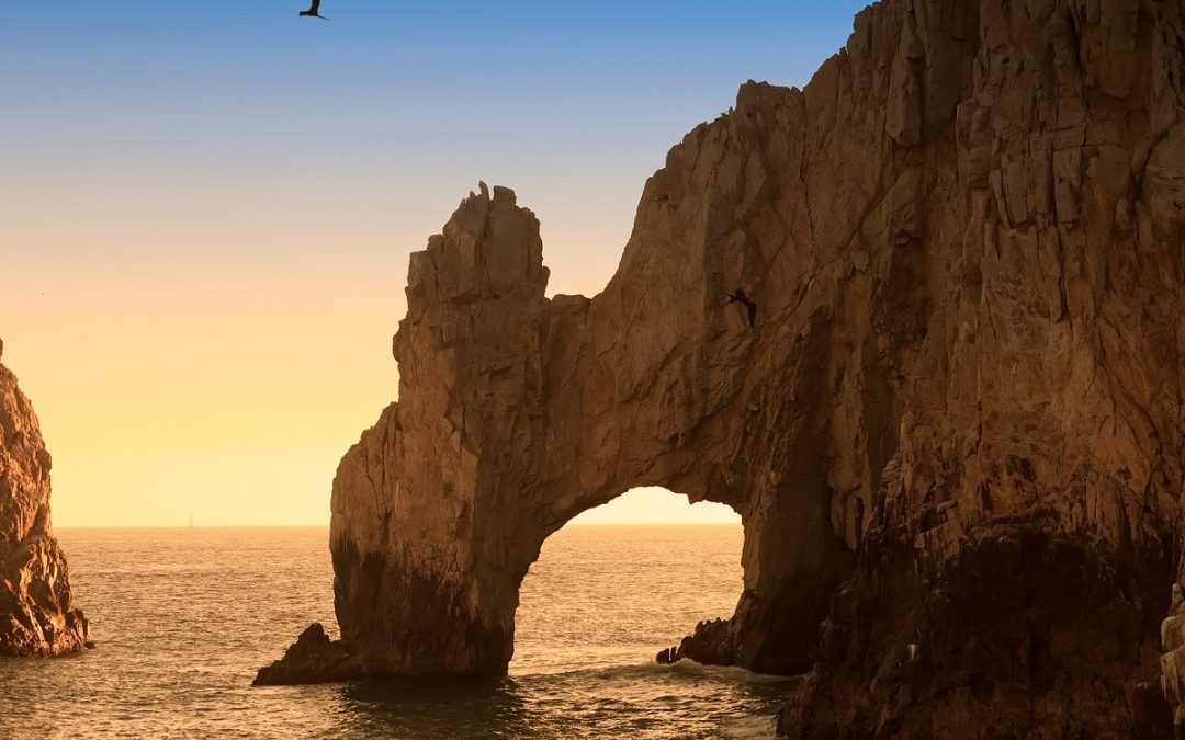 Grand Solmar Timeshare Highlights Best Summer Attractions in Cabo